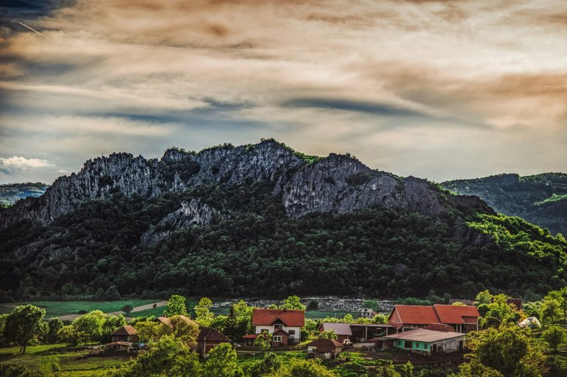 Snezana Popovic Borac
